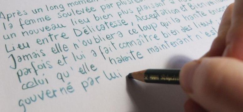 """Aperçu du livre """"L"""" d'Agatha et Léontine Soulier, à paraître..."""