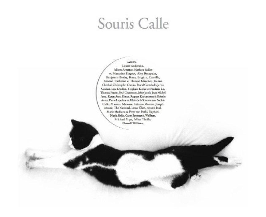 """Sophie Calle, """"Souris Calle"""", 2018. Galerie Perrotin, Paris"""