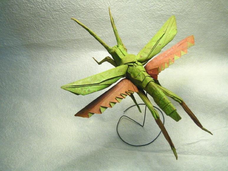 grasshopper brian chan